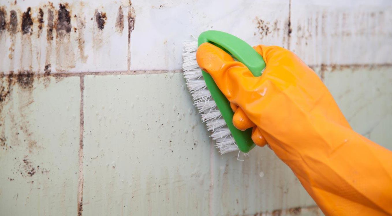 как быстро отмыть плитку в ванной