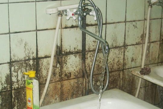 почему появляется плесень в ванной