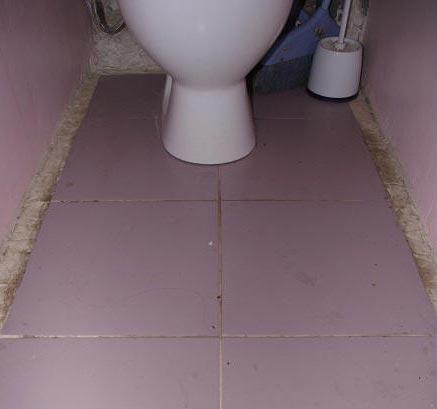 как очистить швы на полу в туалете